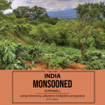 Kawa Świeżo Palona India Arabica Monsooned AA