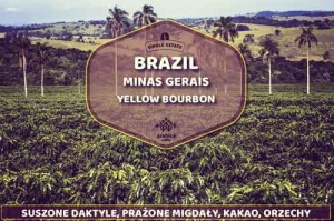 Kawa Brazil Yellow Bourbon Grota Funda
