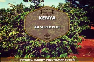 Kawa Kenya AA Super Plus Arabica