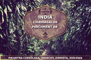 India Chikmagalur Parchment AB Robusta